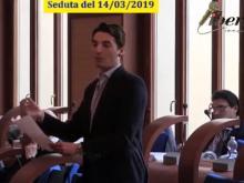 Luca Di Egidio (PD) - Seduta del Consiglio Municipale Roma VII del 14/03/2019