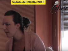 Flavia Cerquoni - Seduta del Consiglio Municipale Roma VII del 28/06/2018
