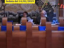Elisa Zitoli - Presidente del Consiglio municipale RM VII -  Seduta del Consiglio Municipale Roma VII del 14/02/2019