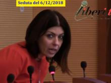 Maria Cristina Ariano (M5S) - Seduta del Consiglio Municipale Roma VII del 6/12/2018