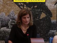 Elena De Santis - Seduta del Consiglio Municipale Roma VII del 15/06/2018