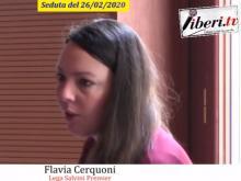 Flavia Cerquoni - Seduta del Consiglio Municipale Roma VII del 26/02/2020. Parte 2 di 2 (Seconda conv. del 25/02/20)