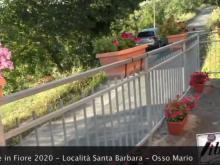 """Concorso """"Belmonte in Fiore 2020"""" - Belmonte Calabro (Cs)"""