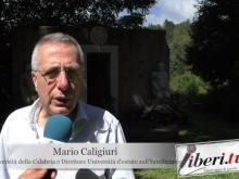Mario Caligiuri - Seconda Università d'estate sull'Intelligence