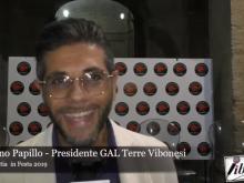 Intervista a Vitaliano Papillo - Vibo Valentia in Festa 2019