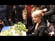 Cannabis: Italia chiama USA. Il Fatto - Manifestazione antiproibizionista a Montecitorio