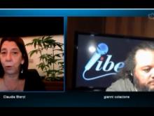 Leggera Euforia - Antiproibizionismo a cura di Claudia Sterzi 20/04/2012