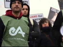 Antispecismo in azione. Conversazione con Claudio Pomo di EssereAnimali, Associazione antispecista – Attivismo in difesa di tutti gli animali