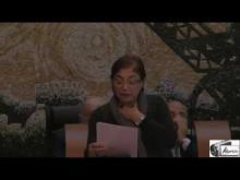 Seduta del Consiglio Municipale Roma VII del 2/12/2014