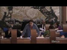 Seduta del Consiglio Municipale Roma VII del 10/07/2014 Parte 1 di 2