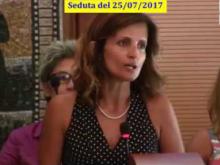 Seduta del Consiglio Municipale Roma VII del 25/07/2017 parte 1 di 3