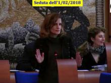 Seduta del Consiglio Municipale Roma VII dell'1/02/2018 Parte 1 di 2
