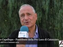 Intervista a Filippo Capellupo - 89° Festa dell'Uva a Catanzaro 2019