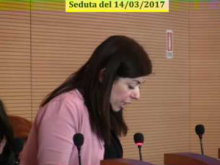 Seduta del Consiglio Municipale Roma VII del 14/03/2017 Parte 2 di 2