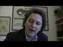 Interviste a Torre Argentina (Sede radicale) sul post voto