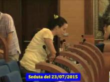 Seduta del Consiglio Municipale Roma VII del 23/07/2015