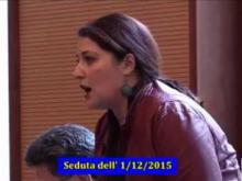 Seduta del Consiglio Municipale Roma VII del 1/12/2015