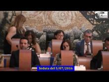 Seduta del Consiglio Municipale Roma VII del 5/07/2016