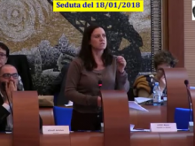 Seduta del Consiglio Municipale Roma VII del 18/01/2018
