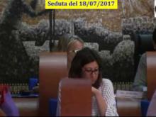 Seduta del Consiglio Municipale Roma VII del 18/07/2017 parte 1 di 3