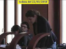 Seduta del Consiglio Municipale Roma VII del 22/03/2018