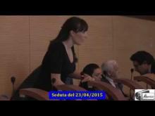 Seduta del Consiglio Municipale Roma VII del 23/04/2015