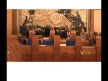 Seduta Straordinaria del Consiglio Municipale Roma VII del 18/03/2014