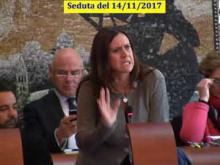 Seduta del Consiglio Municipale Roma VII del 14/11/2017