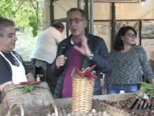 """Interviste """"Tradizione, cultura e folklore"""" - XII Sagra della castagna a Carpanzano"""