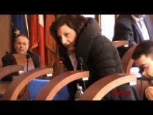 Seduta del Consiglio Municipale Roma VII del 21/02/2014