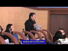 Seduta del Consiglio Municipale Roma VII del 12/02/2015 Parte 1 di 2