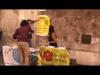 I 12 Referendum Radicali 2013 - Genesi di un tavolino e interviste